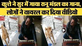 कुत्ते ने सुर में गाया Ranu Mondal का गाना, लोगों ने वायरल कर दिया वीडियो