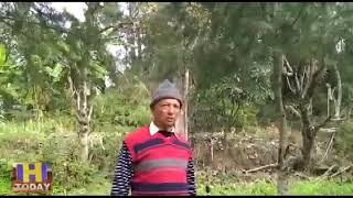 16 JAN N 2  मनसुई छोडब मे रिटायर डिप्टी मेजर किशौरी लाल शर्मा ने देवदार के पेड उगा डाले