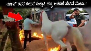Sankrathi Celebration video at Darshan Forum House || Darshan Horse