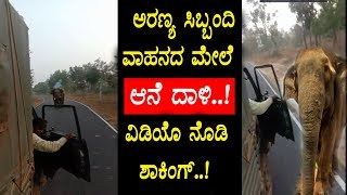 Elephant chase and damage on Forest Officers Vehicle || Video goes viral