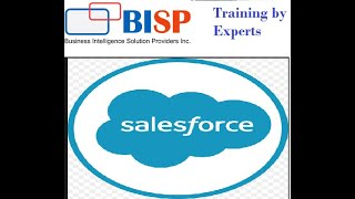 Data Sorting using Wrapper Class | Salesforce Wrapper Class | Salesforce BISP