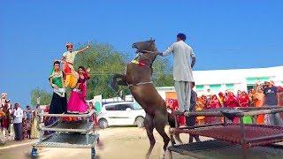 Rajasthani Dj Rasiya | टपके पसीना गालन पे | Latest Rajasthani HD Video Song 2020