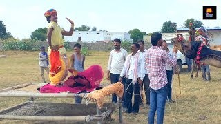 Rajasthani Gurjar Rasiya 2020 | मेरी एड़ी की धमक | Dj Rasiya Video Song 2020 | Maina copy