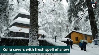 Kullu covers with fresh spell of snow