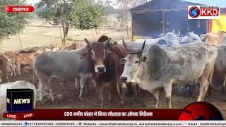 LUCKNOW : औचक निरीक्षण पर गौशाला में मिले मृत गायों के अवशेष