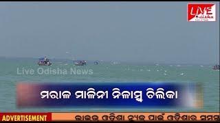 A Journy to Chilika || Live Odisha News Team