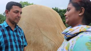 পতিতার দালাল। Potitar Dalal। Bangla natok short film 2019। Parthiv Telefilms