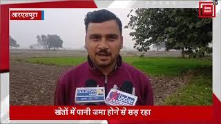 धान के बाद अब गेहूं की फसल पर मंडराया संकट, बेमौसमी बारिश से किसानों के चेहरे मुरझाए