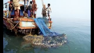 Restart The Subsidy Schemes for Fishermen : Fishermen