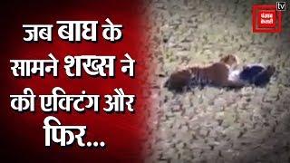 जब Tiger के सामने शख्स ने की Acting, तेज़ी से Viral हो रहा Video