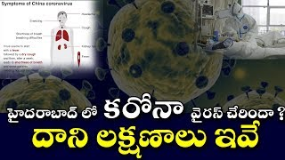 China Corona Virus Cases In Hyderabad City | Telangana News | Corona Virus Symptoms And Remedies