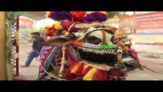 Games of Indian Culture Traditions || భారతీయ సంస్కృతి సాంప్రదాయాల గంగిరెద్దుల అటలు  || social media
