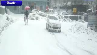 ऊपरी इलाकों में बर्फबारी का दौर शुरू || ANV NEWS KINNAUR - HIMACHAL