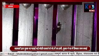 AGRA : तेज रफ्तार डंपर ने बेसहारा गोवंशओं को मारी टक्कर/घर के बाहर खड़े युवक पर हुई फायरिंग