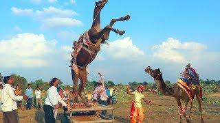 Rajasthani Gurjar Rasiya 2020 | जुड़ गई प्रीत छूटे कैसे | Latest Video Song | Maina