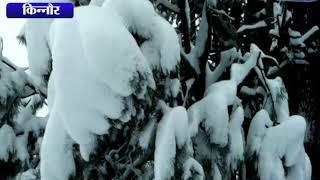 किन्नौर में कल से लगातार बर्फबारी || ANV NEWS KINNAUR - HIMACHAL