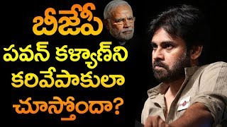 is Pawan Kalyan only Crowed Puller? | BJP | AP Political Analysis By Raghavendra | Top Telugu TV