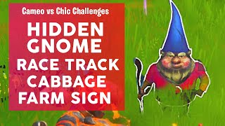Search the Hidden Gnome found in between a Race Track, a Cabbage Patch, and a Farm Sign Fortnite