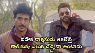 ఆకలేస్తే కాకి,కుక్క దేన్నైనా తింటాడు | 2020 Telugu Movie Scenes | Sree Vishnu | Nara Rohith