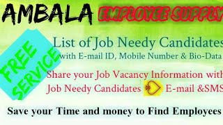 AMBALA     EMPLOYEE SUPPLY   ! Post your Job Vacancy ! Recruitment Advertisement ! Job Information !