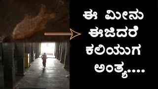 ಈ ಮೀನು ಈಜುತ್ತೇ ಕಲಿಯುಗ ಅಂತ್ಯವಾಗುತ್ತೆ | History Behind Kaliyuga End
