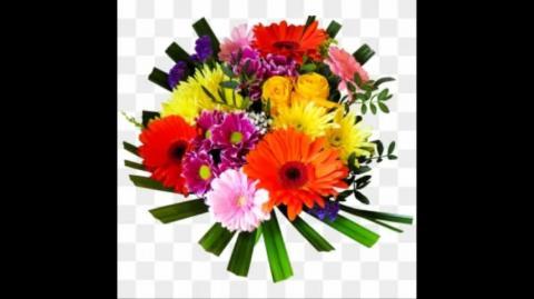 Rohani Ilaj For Love Marriage In Hindi   gurumaa ji 8437857317