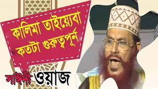 Allama Saidi Bangla Waz Mahfil | কালেমার গুরুত্ব । সাঈদী বাংলা ওয়াজ । Bangla Waz Mahfil Allama Saidi