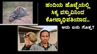 ಹಂದಿಯಾ ವಸ್ತುವಿನಿಂದ ಕೋಟ್ಯಾಧಿಪತಿಯಾದ ಹೇಗೆ ಗೊತ್ತ? |Man who found a pig's gallstone its worth £450,000