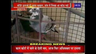 Hanumangarh | Border इलाके में आया कबूतर, पांव में लिखा था कोड वर्ड, पुलिस ने पिंजरे में किया कैद