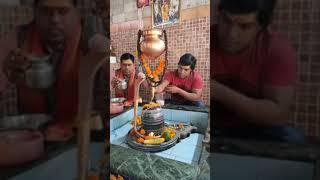 Mohan rathore || सुर संग्राम बिजेता अपने जन्मदिन के दिन शनि धाम मंदिर में पूजा करते हुए