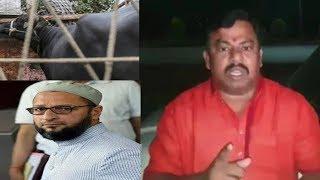 Raja Singh Ne Phir Se Keh Di Aisi Baat | Kya Bol Rahay Hain Ye ?? | @ SACH NEWS |