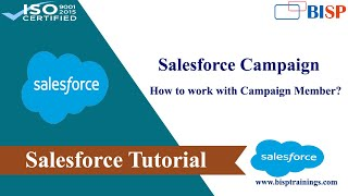 How to work with campaign member in salesforce?