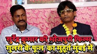 गुलरी के फूल - सुरेंद्र कुमार के साथ डॉली जस नजर आएंगी क्या है कहानी सुरेंद्र मिश्रा ने बताया