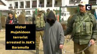 Hizbul Mujahideen terrorist arrested in J&K's Baramulla