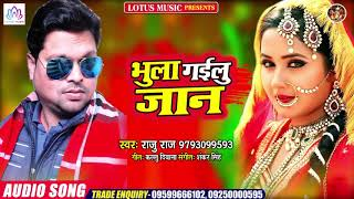 Raju Raj का सबसे दर्द भरा गाना 2020 - भुला गइलू जान - Raju Raj - Bhojpuri New Sad Song 2020
