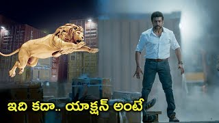 ఇది కదా ఆక్షన్ అంటే | Latest Telugu Movie Scenes | Surya Latest Telugu Scenes