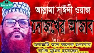 দোজখের আজাবের বর্ননা শুনে কাঁদল লাখো জনতা । সাঈদী সাহেবের অস্থির ওয়াজ মাহফিল । Saidi Bangla Waz
