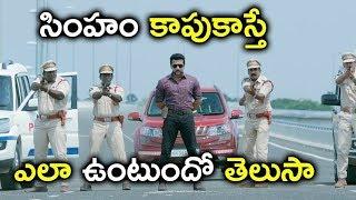 సింహం కాపుకాస్తే ఎలా ఉంటుందో తెలుసా | Latest Telugu Movie Scenes | Surya Latest Telugu Scenes