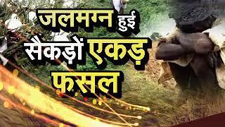 'आसमानी आफत' से किसान बेहाल, देखिए दोपहर 12 बजे सिर्फ JANTA TV पर