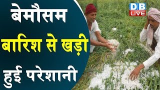 बेमौसम बारिश से खड़ी हुई परेशानी | किसानों पर पड़ी कुदरत की मार |#DBLIVE