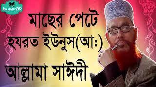 মাছের পেটে হযেরত ইউনুস(আ:) । Bangla Waz Mahfil | Allama Delwar Hossain Saidi Waz Mahfil | Islamic BD