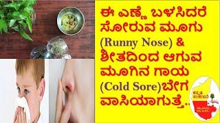ಮೂಗು ಸೋರುವ ಸಮಸ್ಯೆ & ಮೂಗಿನ ಹುಣ್ಣಿಗೆ ಸುಲಭ ಮನೆಮದ್ದು| How to stop Runny Nose | Cold Sore |ಕನ್ನಡ ಸಂಜೀವನಿ