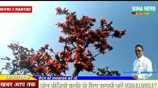SILLI_झारखंड का राजकीय फूल पलाश इन दिनों झारखंड के जंगलों में पलाश के फूल देखते ही बन रहे हैं
