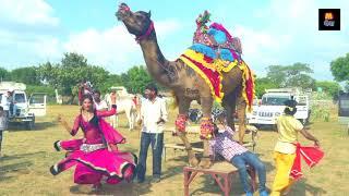Rajasthani Gurjar Rasiya 2020 | हीरो राजा आयो | Dj Rasiya Video Song 2020 | Maina