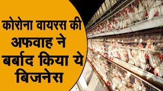 चिकन और अंडे खाने से नही होगा कोरोना वायरस, इस अफवाह से रहे दूर