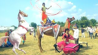 New Dj Rasiya || मेरी एड़ी की धमक - Meri Adi Ki dhamak || Vid Evolution Rajasthani