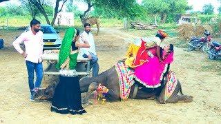 Rajasthani Dj Song | टपके पसीना गालन पे | Latest Rajasthani Dj Song 2020