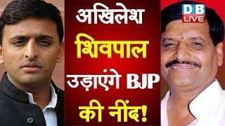 Akhilesh Yadav - Shivpal Yadav उड़ाएंगे BJP की नींद! |  Akhilesh Yadav latest news | #DBLIVE