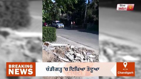 Breaking: Chandigarh में दिखा तेंदुआ, Alert पर प्रशासन