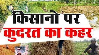 बीदासर : बारिश व ओलावृष्टि से किसानों की फसल बर्बाद, किसान लगा रहे है सरकार से मदद की गुहार